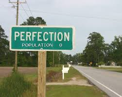 Business coaching of The Great Error in Business: Seeking Perfection