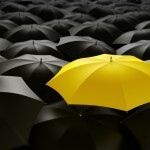 Making Your Business Stand Out from the Pack